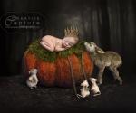Cinderella-pumpkin-mice-deer-3-done