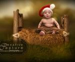FB7A2435-fullsize-blur.jpg